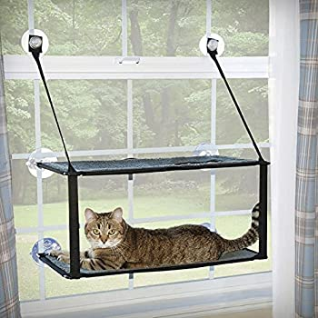 Amazon Oster Sunny Seat Window Mounted Cat Bed 50