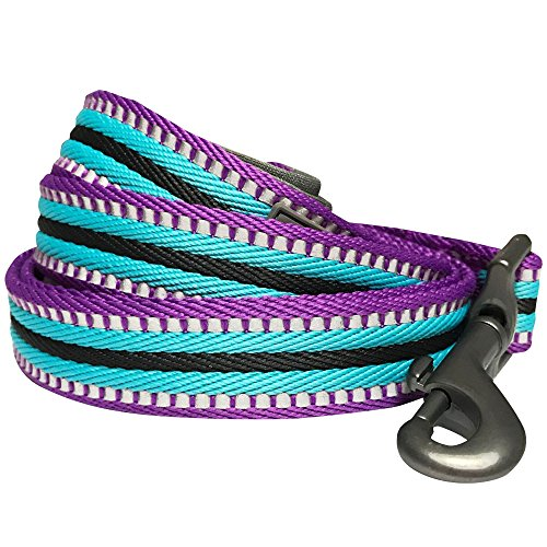 (Blueberry Pet 8 Colors 3M Reflective Multi-Colored Stripe Dog Leash with Soft & Comfortable Handle, 5 ft x 5/8