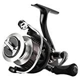 SeaKnight WR II Spinning Fishing Reel 6.2:1 Gear Ratio 10+1 BB Ultra Smooth Powerful 29LB Fishing Reel (WR3000+Spool) For Sale