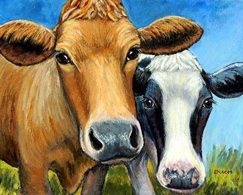 Amazon Com Cows Two Cows Holstein And Jersey Cow Art Print Red