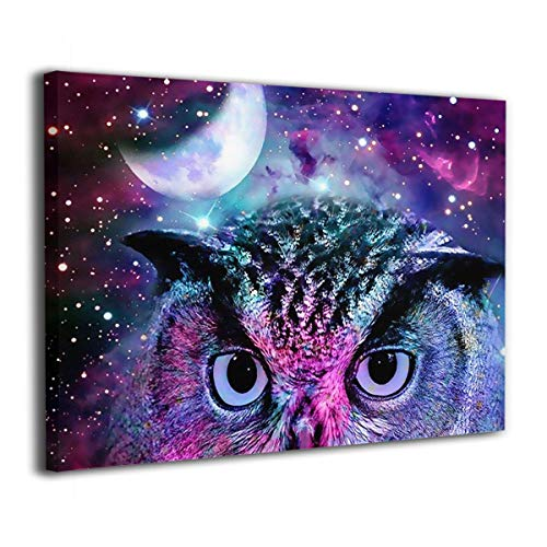 - ELKFOREST Galaxy Owl Frameless Painting Abstract Oil Paintings On Canvas Wall Art Ready to Hang Bedroom Painting Home Decoration Painting Canvas Prints for Home Decorations