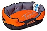 Cheap TOUCHDOG 'Performance-Max' Sporty Comfort Cushioned Reflective Water-Resistant Fashion Pet Dog Bed Mat, Large, Sunkist Orange, Black
