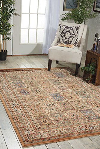 - Nourison Persian Arts (BD01) Beige Rectangle Area Rug, 9-Feet 6-Inches by 13-Feet  (9'6