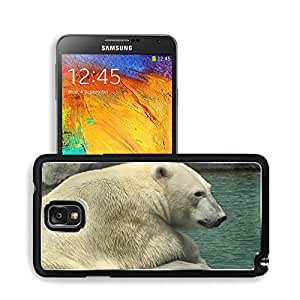 Animals Polar Bears in Rock Lonely Samsung Note 3 N9000 Snap Cover Premium Aluminium Design Back Plate Case Open Ports Customized Made to Order Support Ready 5 14/16 Inch (150mm) X 3 2/16 Inch (80mm) X 11/16 Inch (17mm) MSD N3 Note 3 Professional Cases Ac