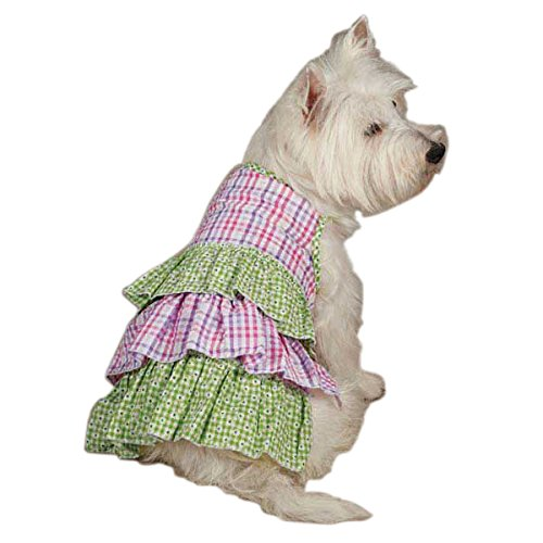 (Zack & Zoey UM3003 06 43 Summer Breeze Dress Teacup for Dogs, Green)