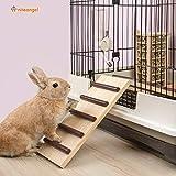 Niteangel Wooden Cage Bridge for Rabbits, Guinea