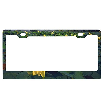 Colored Flower Auto Car License Plate Frame Tag Holder 4 Hole