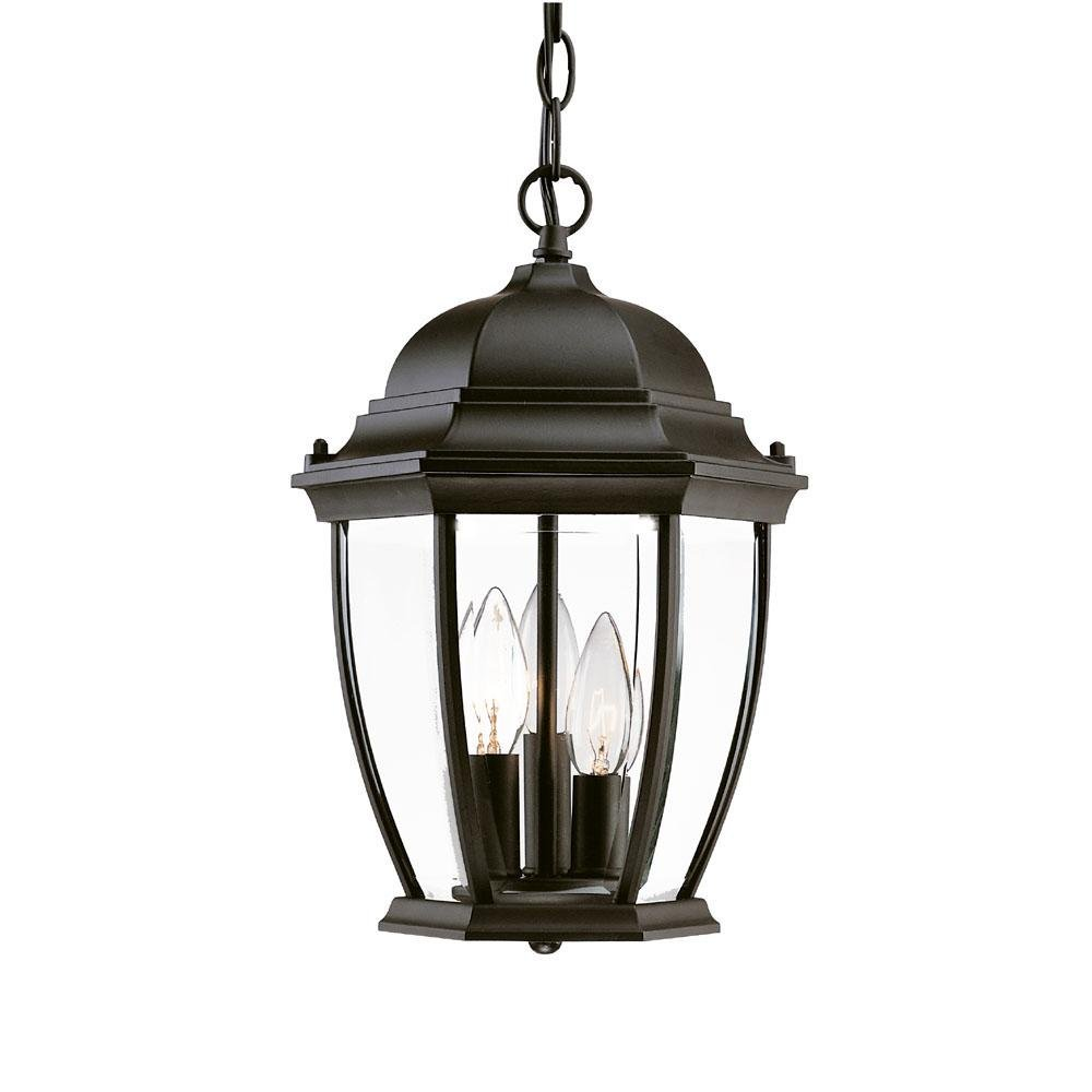 Acclaim 5036BK Wexford Collection 3-Light Outdoor Light Fixture Hanging Lantern, Matte Black