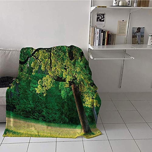 Khaki home Children's Blanket Chair Warm All Season Blanket for (60 by 80 Inch,Tree of Life,Fresh Young Leaves of Oak Branches in The Park Tranquil Nature Landscape,Green Brown ()