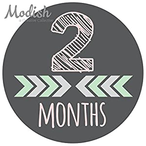 12 Monthly Baby Stickers, Pink, Gray, Tribal, Arrows, Chevron, Baby Month Stickers Girl, Baby Book Keepsake, Baby Shower Gift 3