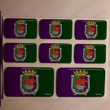 Pegatinas Malaga España Resina, 8 x Pegatinas Relieve 3D Bandera Malaga España Adhesivo Vinilo: Amazon.es: Coche y moto