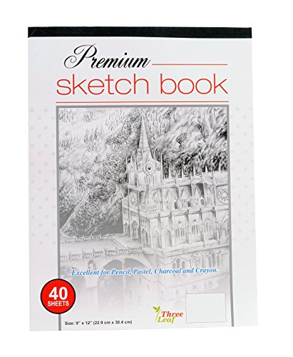 (Premium Sketch Book - 9x12-Inch - 40 Sheets per Book - Excellent for Pencil, Pastel, Charcoal and Crayon from Northland Wholesale. (1-Premium Sketch Book))