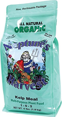 Soil Organic Fertilizers (Neptune's Harvest Kelp Meal Multi-Purpose Plant Food 1-0-2 4lb)