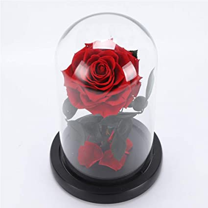 Home & Garden Artificial & Dried Flowers Creative Artificial Flowers Eternal Red Rose Glass Dome Flowers Led Light Birthday Valentines Day Gift