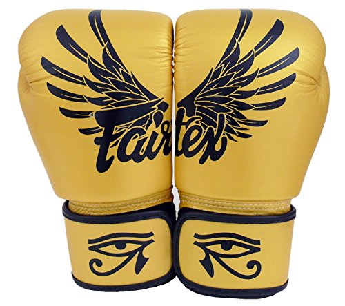 Fairtex Boxing Kickboxing Muay Thai Style Sparring Gloves Training Punching Bag Mitts (10 oz, Falcon Gold) ()
