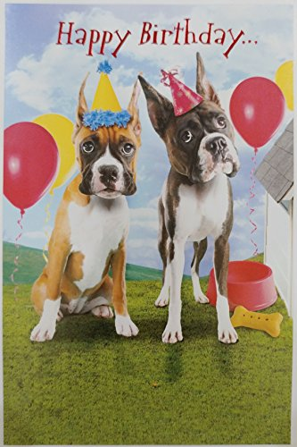 Happy Birthday from a couple of knuckleheads Boxer Dogs Greeting Card From Us (Boxer Dog Greeting Cards)