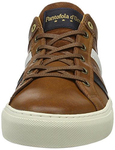 Shell Pantofola Baskets Tortoise d'Oro Homme Braun 013 Monza Low Uomo fIZwIn8qr