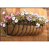 Standard Scroll Hay Rack Window Basket w/ Coco Liner - 72 Inch