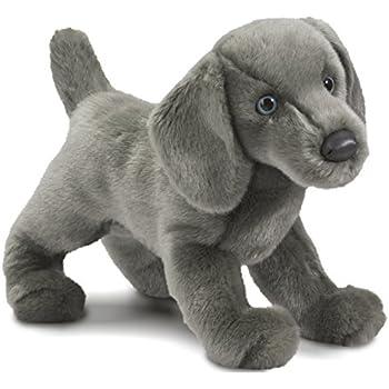 60add09d4c1b Amazon.com: 5Star-TD TY Beanie Baby - Frisbee The Dog: Toys & Games