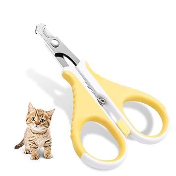 Amazon.com: DreamCat - Cortaúñas profesional para gatos, la ...