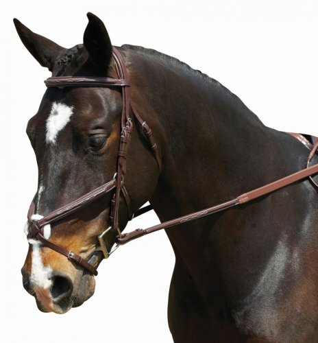 Collegiate Comfort Crown Figure Bridle product image