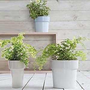 slim-flower Pot