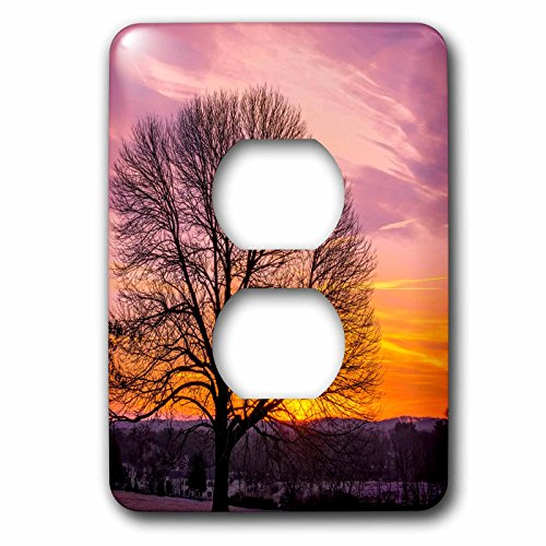 Danita Delimont - Sunrise - USA, Pennsylvania, King of Prussia. Tree silhouette at sunrise. - Light Switch Covers - 2 plug outlet cover - Outlet Of King Prussia