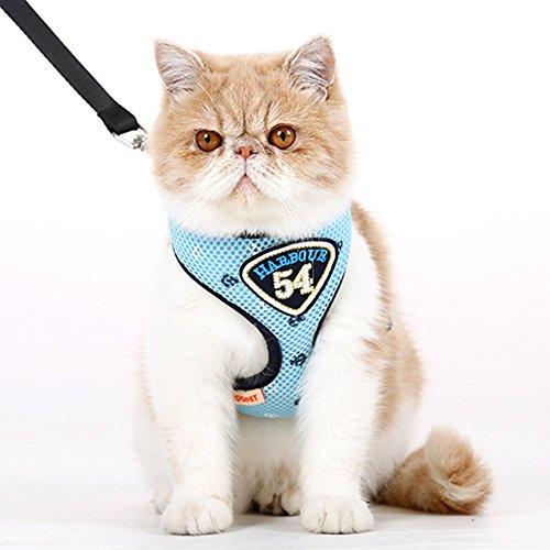 Hoopet Pet Control Hundegeschirr Weste und Leine Set für Hund oder Katze, weich und leicht zu Walking