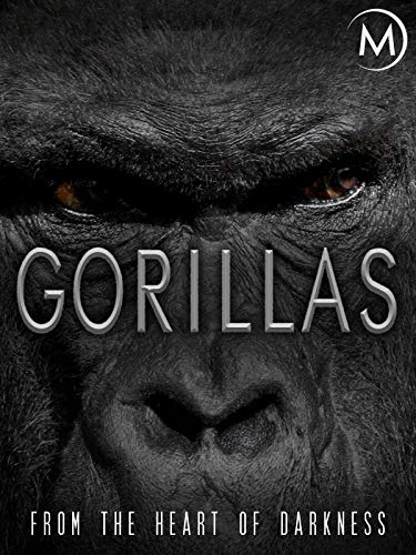 Gorillas: From the Heart of Darkness (Gorilla Mountain)