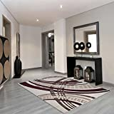 Contemporary Cindy Area Rug Home Decor Discount Rugs Living Family Dining Bed Room Floor Carpets (7 ft. 8 in. x 5 ft. 3 in.)