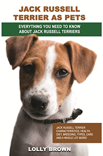 jack-russell-terrier-as-pets-jack-russell-terrier-characteristics-health-diet-breeding-types-care-an