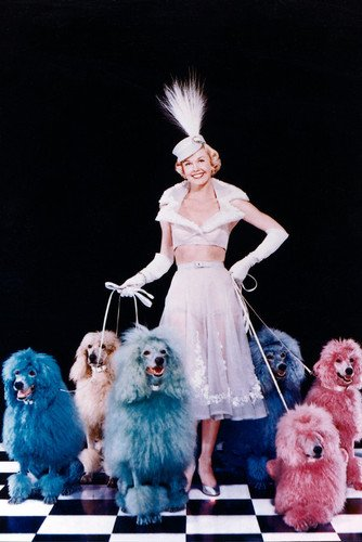 Doris Day 24x36 Poster with pink and blue poodles Silverscreen