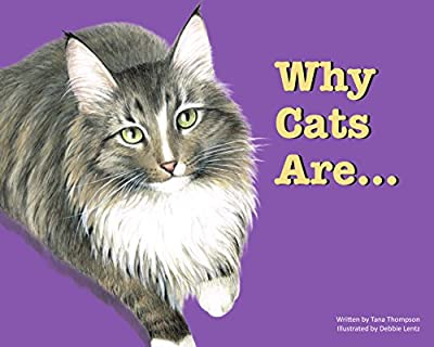 Why Cats Are