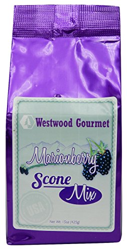 fisher fair scone mix - 7