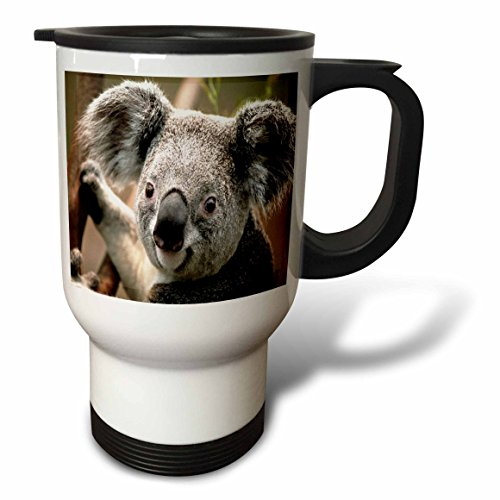 Koala Travel Mug, 14 Ounce