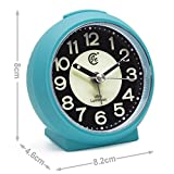 JCC Charming Luminous Small Round Handheld Size Non Ticking Quartz Bedside Desk Clock Travel Alarm Clock with Light Night, Snooze Function - Battery Operated