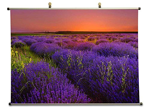 Lavender field - Canvas Wall Scroll Poster (60x80 cm)