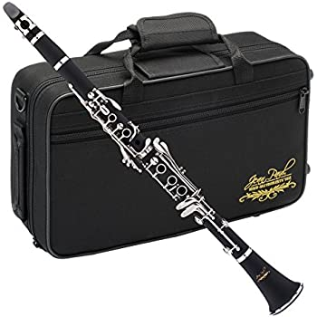 Amazon.com: Buffet Crampon R13 Professional Bb Clarinet with ...