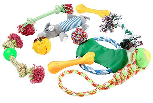 DODODO  Set of 10 Dog Toys Collection, Dog Toys Variety Pack in Gift Bag (Colors May Vary)