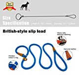 lynxking Dog Leash Rope Slip Leads Strong Heavy