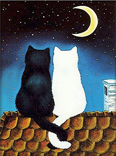 "eGoodn Diamond Painting Art Kit DIY Cross Stitch by Number Kit DIY Arts Craft Wall Decor, Full Drill 15.8"" by 19.7"", Black and White Moon Cat, No Frame (Black Cat Stitch Cross)"