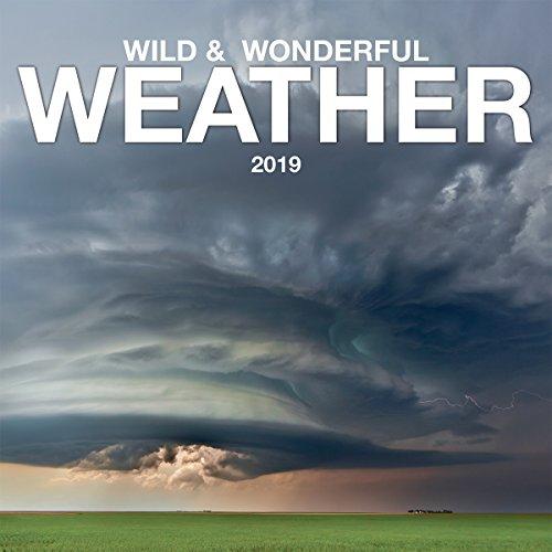 espátula Photographic Wild & Wonderful Weather 2019 Mini Calendario de Pared (19998950035)