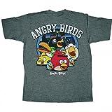 Angry Birds Circle Night Men's T-Shirt, Medium