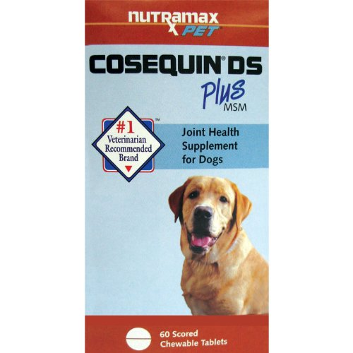 Cosequin DS Joint Health Supplement Plus MSM for Dogs — 60 Chewable Tablets, My Pet Supplies