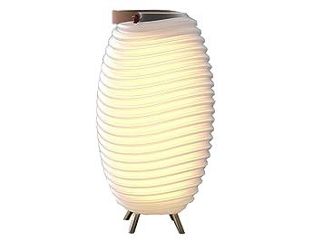 FleurAmazing Lampe Glacire Et De Pot Kooduu Enceinte trdCshQx