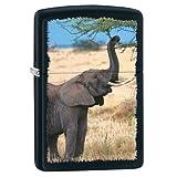 Zippo Black Matte Elephant Lighter