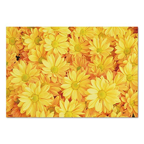 Large Wall Mural Sticker [ Yellow Flower,Lively Daisies Fresh Bouquets with Natural Seasonal Bedding Plant Petals,Yellow Marigold ] Self-adhesive Vinyl Wallpaper / Removable Modern Decorating Wall Art ()