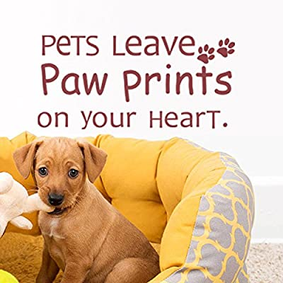 Pets Leave Paw Prints On Your Heart Vinyl Love Decal Pet Love Wall Quote Dog Wall Sticker Wall Letters Phrase Words Wall Graphic Home Wall Decoration