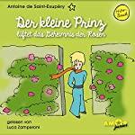 Der kleine Prinz lüftet das Geheimnis der Rosen (Der kleine Prinz 8) | Antoine de Saint-Exupéry