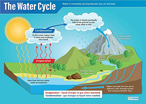 "The Water Cycle | Science Posters | Laminated Gloss Paper Measuring 33"" x 23.5"" 
